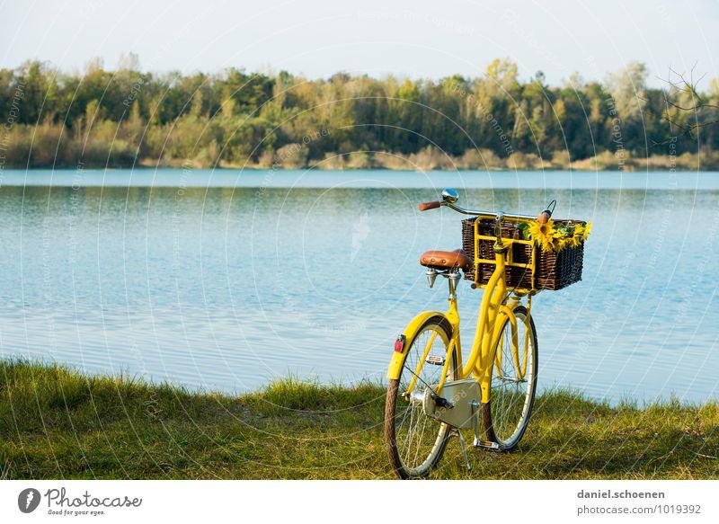 Saisoneröffnung Schwimmen & Baden Freizeit & Hobby Ausflug Fahrradtour Sommer Schönes Wetter Seeufer Erholung blau gelb grün Baggersee ruhig Farbfoto