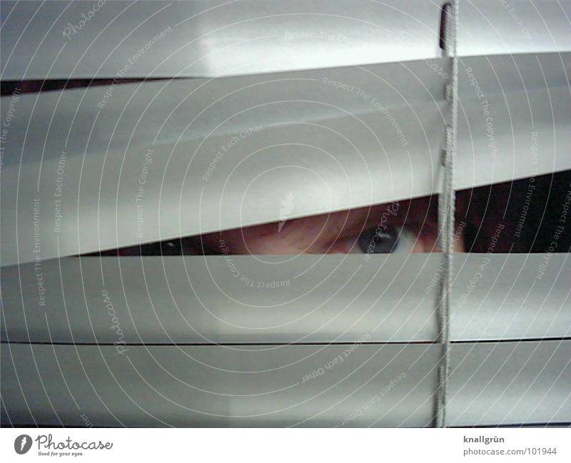 Left eye Frau blau Auge grau glänzend Schnur verstecken silber Jalousie Rollo Augenfarbe