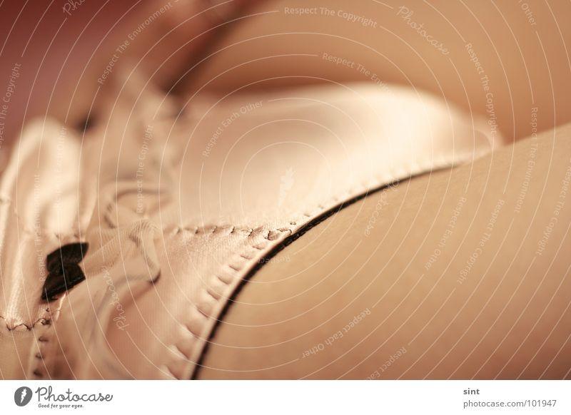 einschleifen Frau feminin Bekleidung Unterwäsche Schleife Textilien Makroaufnahme Rüschen Satin