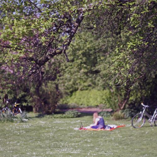 Sommer Essen trinken Lifestyle Freizeit & Hobby Ausflug Sonne Picknick Decke Fahrradfahren feminin Junge Frau Jugendliche Erwachsene Körper 1 Mensch 18-30 Jahre