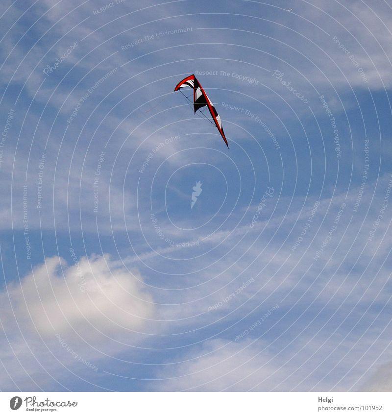 Tanz im Wind... Lenkdrachen oben tief Stoff Schnur schwarz weiß rot Wolken Luft Wasserkuppe Publikum Freizeit & Hobby Zeitvertreib Freude Funsport Himmel