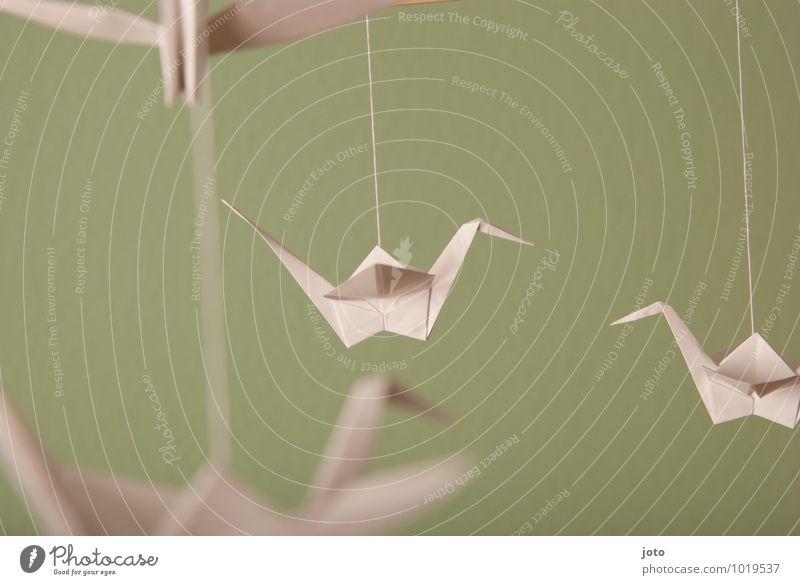 begegnung Design Zufriedenheit Erholung ruhig Taufe Kindheit Tier Vogel Papier fliegen hängen frei maritim modern nachhaltig Gelassenheit Frieden Leichtigkeit