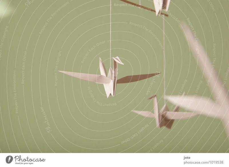 papierflieger Design Zufriedenheit Erholung ruhig Taufe Kindheit Tier Vogel Papier fliegen hängen frei maritim modern nachhaltig Gelassenheit Leichtigkeit