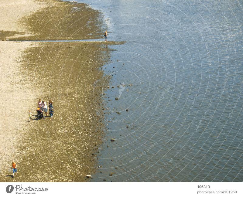 PUSH PUSH, PUSH PUSH, PUSH P ... Dresden Elbe Fluss Flussufer Wasser Niedrigwasser Elbwiese Strand Strandspaziergang Frau 3 Kind Kinderwagen Ausflug