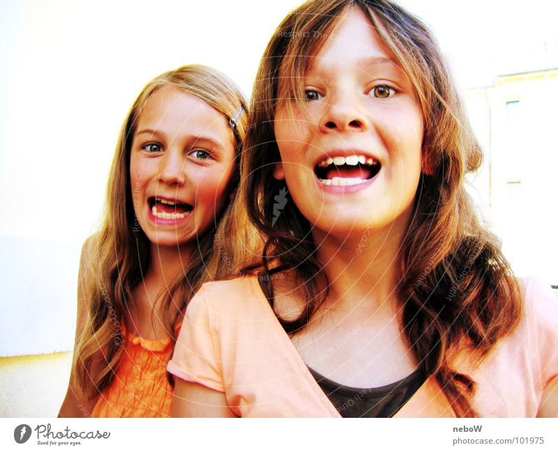 gespielte Angst Mädchen schreien gehorsam Spielen Geschwister Frau Freude Mensch hell Zähne