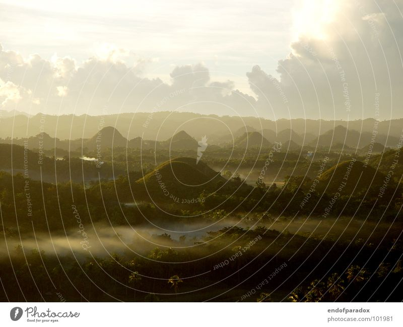 wake up... Asien Bohol Natur Ferien & Urlaub & Reisen Licht Frieden Wald Palme Nebel angenehm grün ruhig harmonisch Sonnenaufgang Philippinen Außenaufnahme