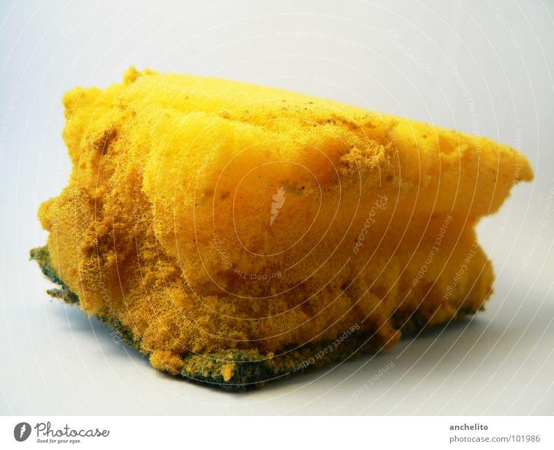 Charakter-Schwamm gelb weiß saugen aufsaugen Wischen Reinigen nass feucht trocken Bad Küche verrotten Oldtimer Sauberkeit Gastronomie schwammig saugend
