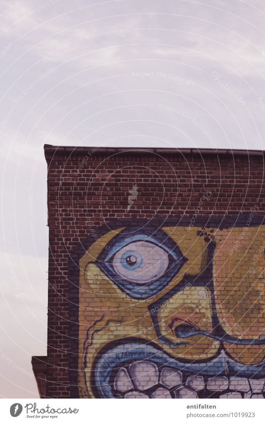 Wat glotzte? Auge Wand Graffiti Mauer Kunst Lifestyle Fassade Freizeit & Hobby Design Dach Grafik u. Illustration Neugier Fabrik Verfall Überraschung Backstein