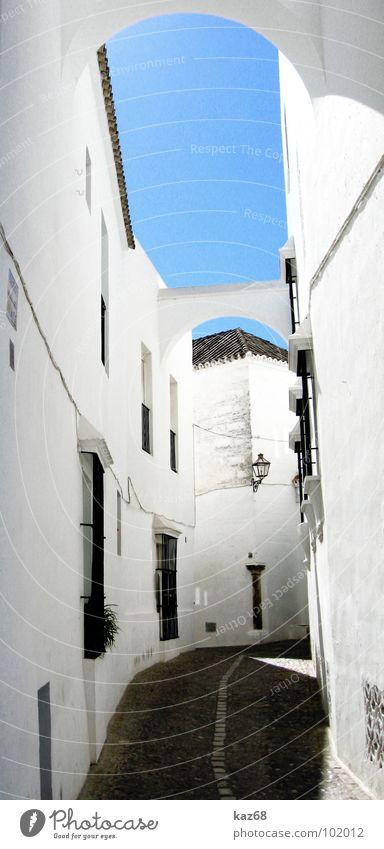 gasse Gasse weiß Dorf Spanien eng schmal Mauer Einsamkeit Sommer Fenster Elektrizität Hintergrundbild ruhig Blume Mittag Kalk Lampe klein Menschenleer Backstein