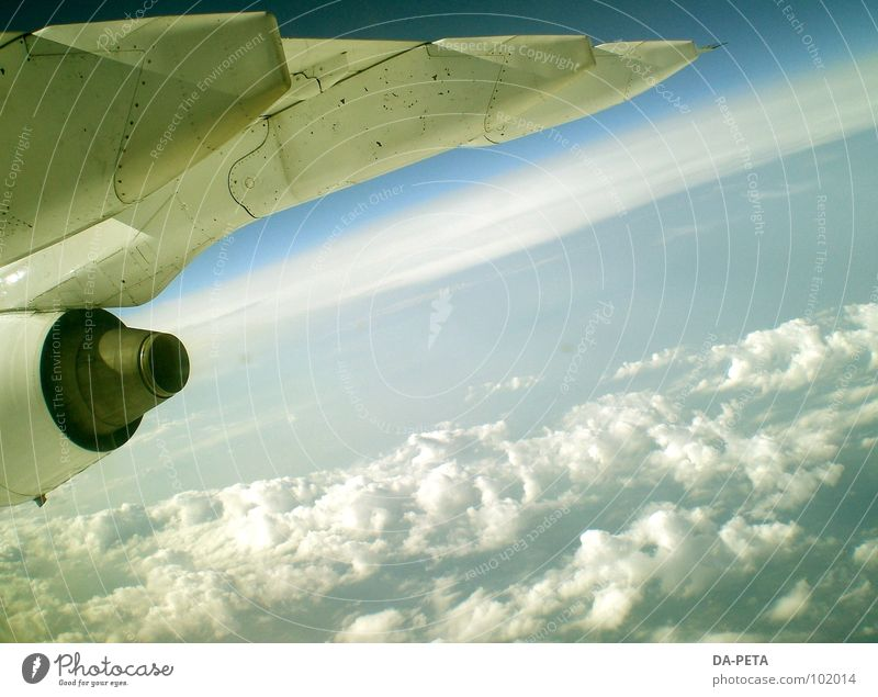 auf und davon... Flugzeug Wolken weiß Himmel Wolkendecke Horizont Ferne tief Triebwerke Umwelt Luftverkehr Radarstation Absturzgefahr gleiten Schweben Meer