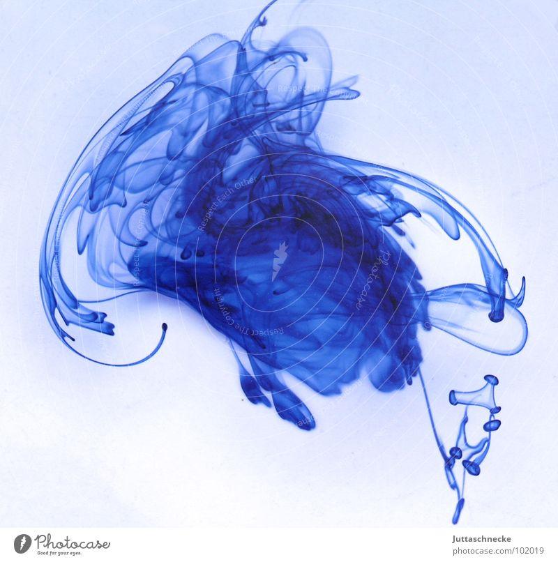 Blau Tinte weiß zerrinnen Fleck abstrakt Muster fade durcheinander blau hell-blau Konzentration Mitte Orkan Wirbelsturm Kunst Kunsthandwerk schön blue ink