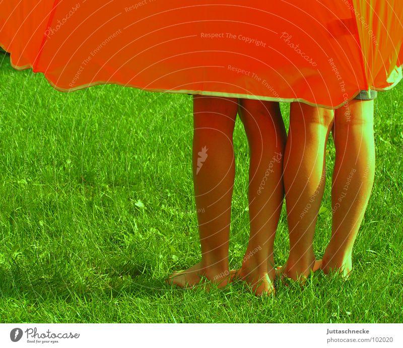 Vielfüßer Sonnenschirm grün Gras Wiese Kind Mensch Sommer groß unten Geborgenheit Sicherheit Wohlgefühl träumen Kindheitstraum 2 Zwilling Farbe Frieden umbrella
