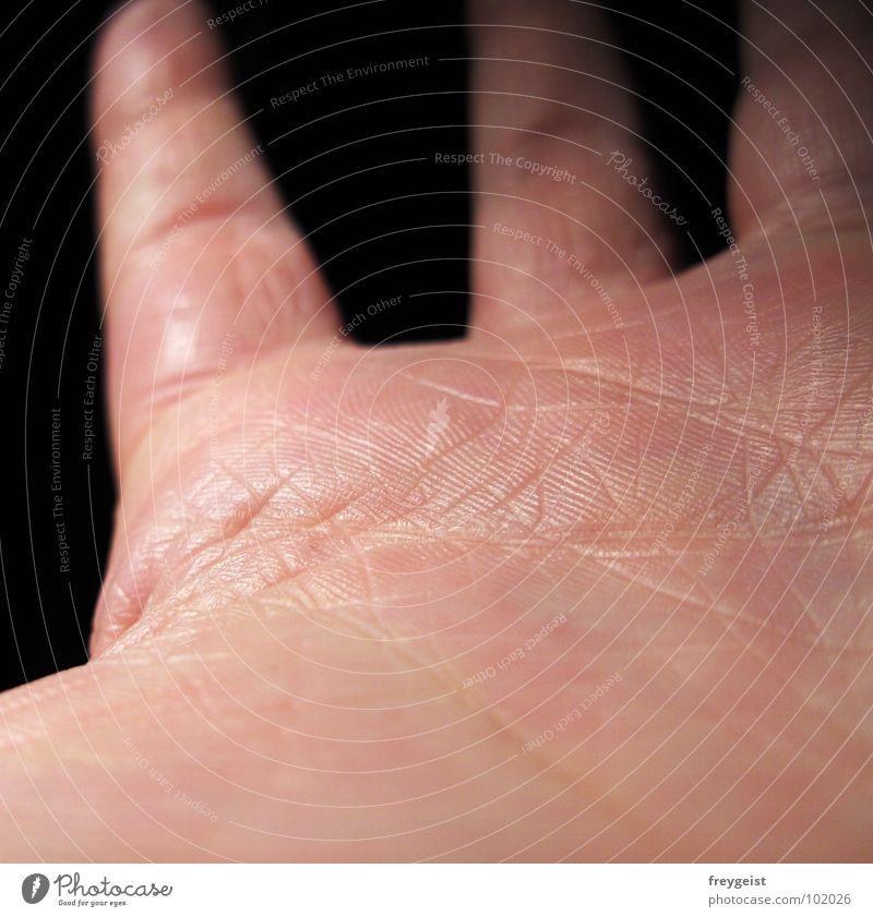 Skin to Skin Hand schwarz dunkel Haut Hintergrundbild Finger fangen Blattadern Organ