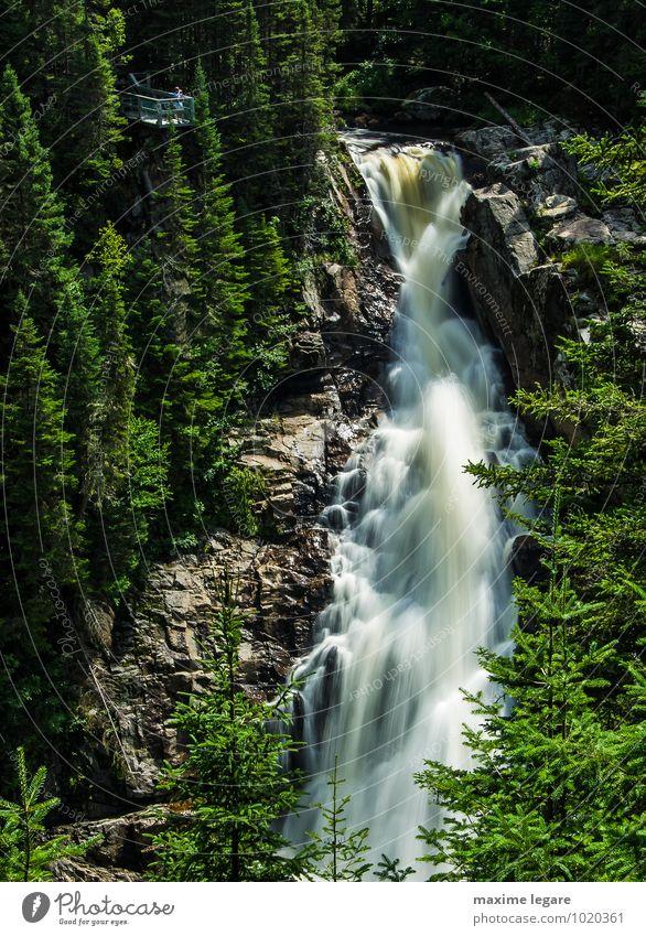 Natur Pflanze Wasser Sommer Baum Landschaft Wald Umwelt Berge u. Gebirge Freiheit Felsen Erde Tourismus Sträucher wandern Klima