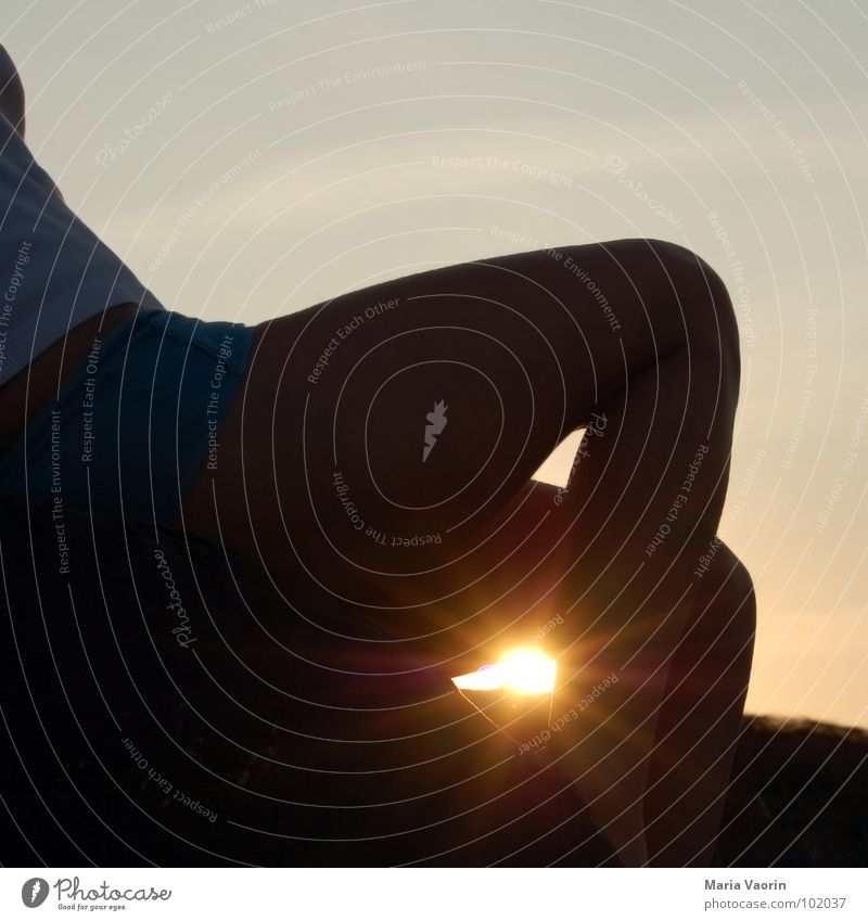 Sommer, Sonne, Sonnenschein Frau Abendsonne Sonnenuntergang Sonnenstrahlen Sommergefühl Gefühle Erholung Sonnenbad Himmelskörper & Weltall Beine sunshine