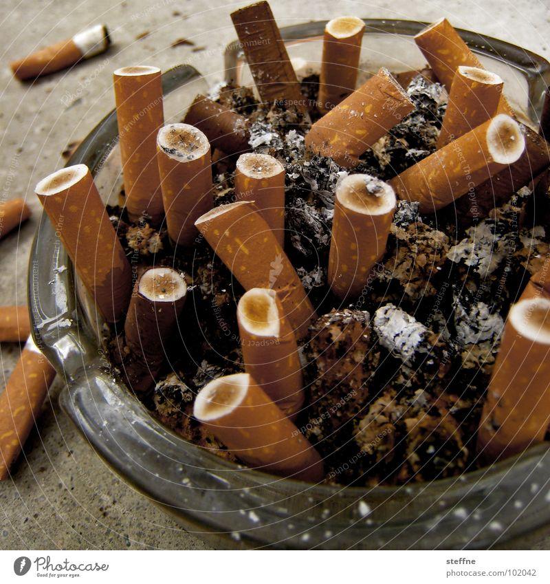 Aschebescher Aschenbecher Zigarette Nikotin Lunge vergiftet dreckig ausgedrückt gelb Ocker weiß Balkon aufräumen Reinigen Müll Rauchen grau Ekel ruhig braun