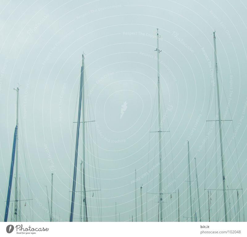 Bootsoberhäupter Himmel Natur blau Wasser Ferien & Urlaub & Reisen Meer Sommer Wolken Einsamkeit ruhig Ferne Erholung oben grau Küste See