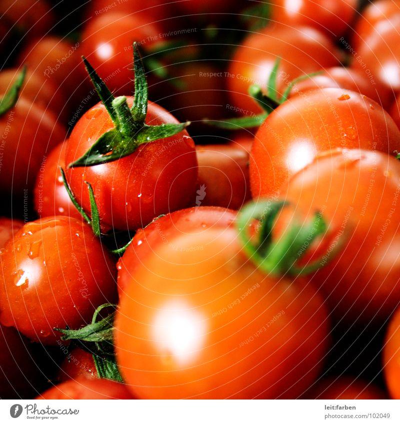 fuck miracoli Mittagessen rot frisch Gesundheit Miracoli Sizilien mediterran Cocktail klein grün Gesunde Ernährung rein Makroaufnahme Mittelformat Quadrat