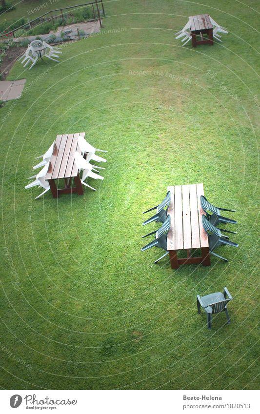 Es ist angerichtet! Wohlgefühl Erholung ruhig Freizeit & Hobby Ferien & Urlaub & Reisen Ruhestand Feierabend Natur Sonne Sommer Gras Garten Wiese Kommunizieren