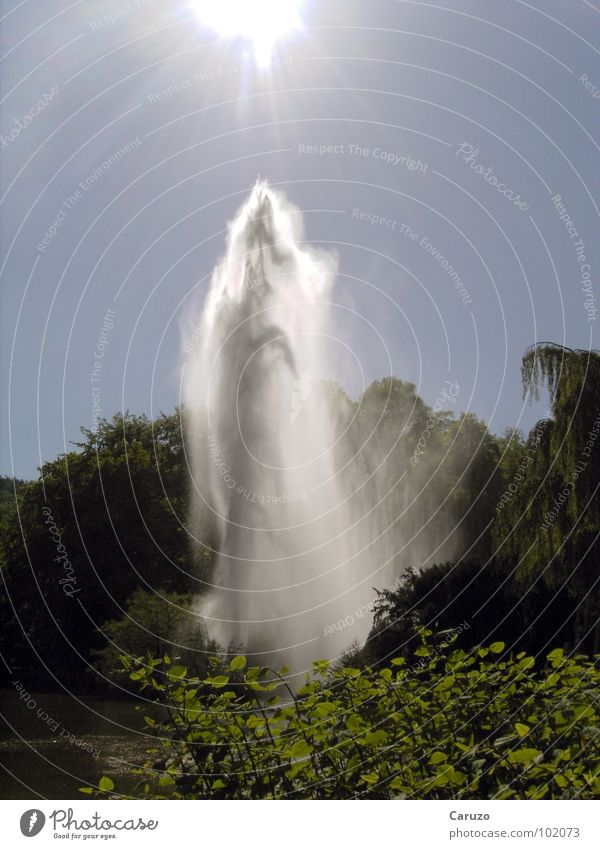 Wasserfontäne Natur Sonne Sommer Freude See Regen nass Wassertropfen hoch Fluss Strahlung feucht Bach Teich fein