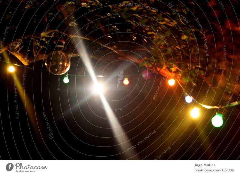 Party time Disco Licht Baum Open Air Sechziger Jahre Lichterkette gemütlich Romantik Abend durchdrehen Club Feste & Feiern Lampe Musik Verabredung