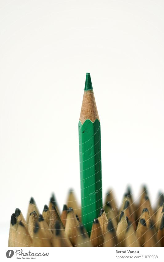 Grüner Schreibstift braun grau grün Bleistift Farbstift Spitze aufstrebend oben Karriere Politiker Holz holzstift mehrere Durchsetzungsvermögen Streber Büro