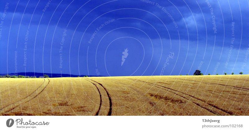 Blauwettergelb Feld Wolken Horizont Landwirtschaft Deutschland blau Himmel Ernte Spuren Wetter Farbe Kontrast