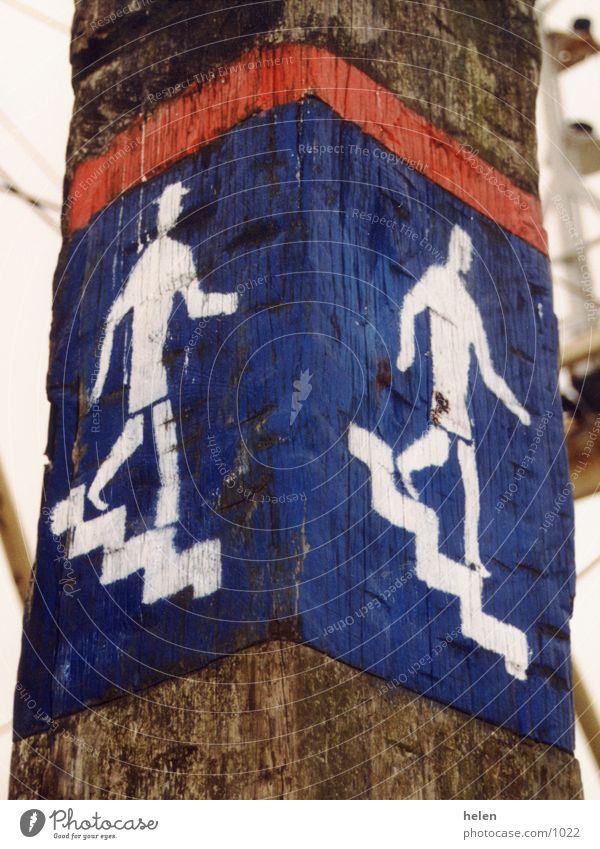 downstairs Hinweisschild Steg Meer Niederlande Dinge Schilder & Markierungen Treppe Wasserfahrzeug Texel abwärts Holzpfahl