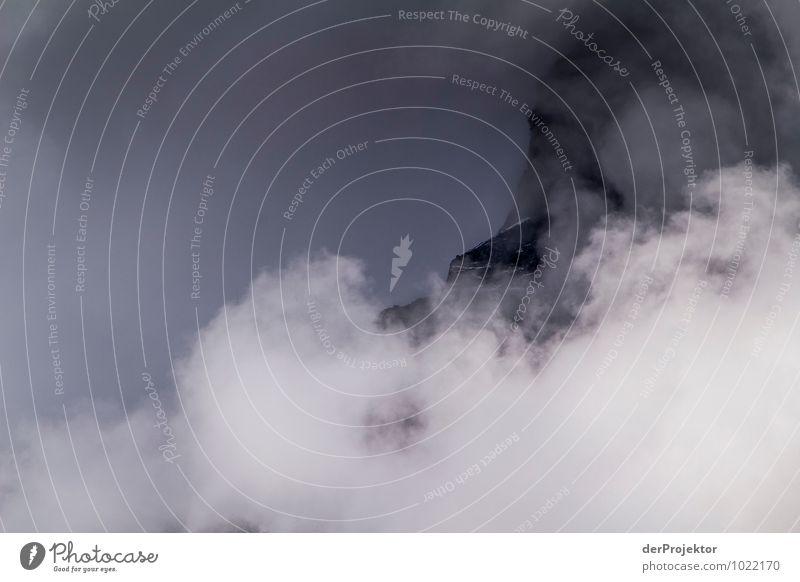 Berg im Wolkenmeer Natur Ferien & Urlaub & Reisen Pflanze Landschaft Ferne Berge u. Gebirge Umwelt Gefühle Freiheit Felsen Eis Tourismus Nebel Kraft Abenteuer