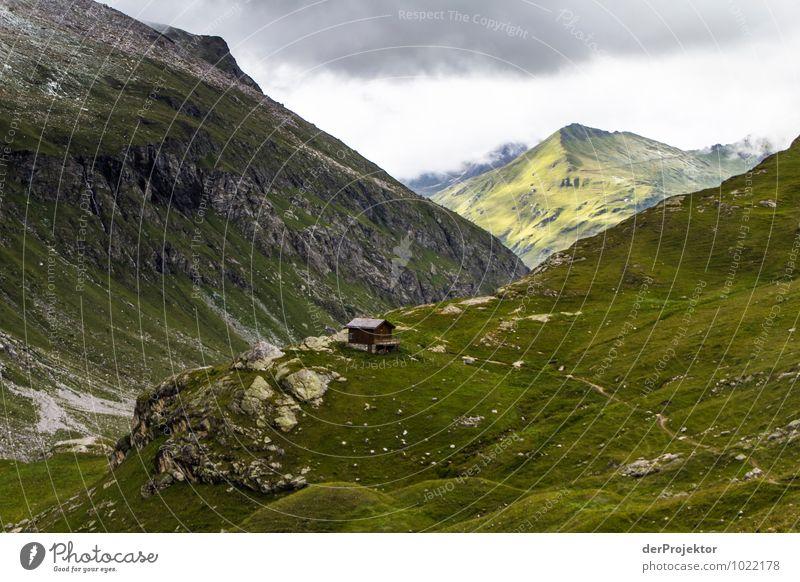 Hütte mit Panorama in Frankreich Natur Ferien & Urlaub & Reisen Pflanze Sommer Landschaft Tier Ferne Berge u. Gebirge Umwelt Gefühle Wiese Freiheit Felsen
