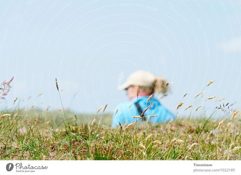 Sfa. feminin 1 Mensch Umwelt Natur Landschaft Himmel Schönes Wetter Gras Hügel Dänemark Mütze Haare & Frisuren Halm Blick ästhetisch natürlich blau grün Gefühle