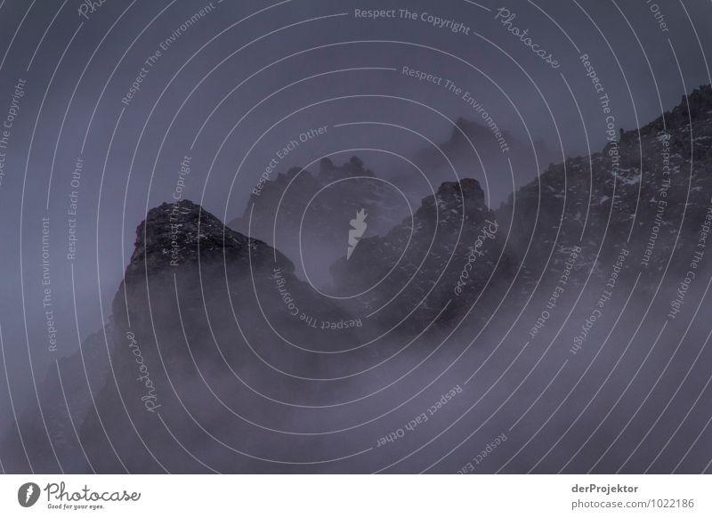 Nebelgebirge Natur Ferien & Urlaub & Reisen Pflanze Sommer Landschaft Tier Ferne Berge u. Gebirge Umwelt Gefühle Freiheit Felsen Tourismus Ausflug Abenteuer