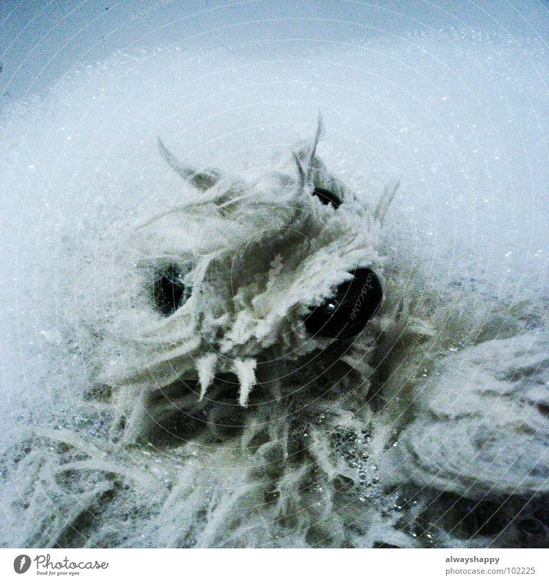wet fur contest dreckig nass Reinigen trashig obskur Waschen Puppe Schaum Stofftiere Knopfauge Handpuppe Puppenauge