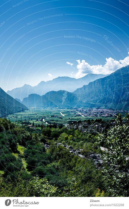 Richtung Arco Himmel Natur Ferien & Urlaub & Reisen blau grün Sommer Blume Landschaft Wolken Ferne Wald Umwelt Berge u. Gebirge natürlich Idylle Tourismus