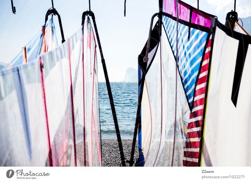 An die Segel, fertig los! Lifestyle elegant Stil Freizeit & Hobby Ferien & Urlaub & Reisen Tourismus Abenteuer Sommer Sommerurlaub Wassersport Windsurfing