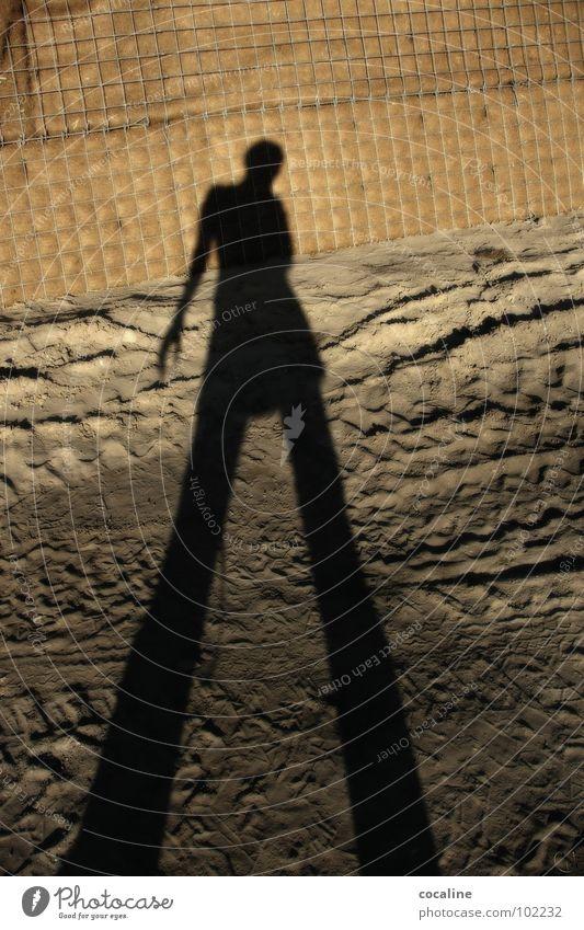 Im Reich der Schatten Frau Mensch Sand Erde Baustelle Spuren Geister u. Gespenster Koloss Reifenspuren Schattenspiel Schlagschatten Erdton
