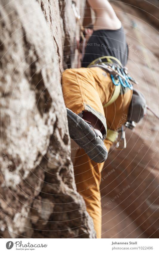 Aufsteiger des Monats Klettern Bergsteigen Karriere maskulin 1 Mensch 18-30 Jahre Jugendliche Erwachsene Natur Felsen Kletterschuh Kraft Willensstärke Mut