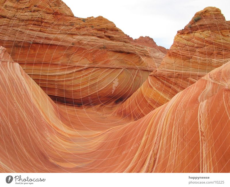 WAVE Arizona Utah Wellen the wave vermillion cliffs USA Felsen Stein Sand Wind