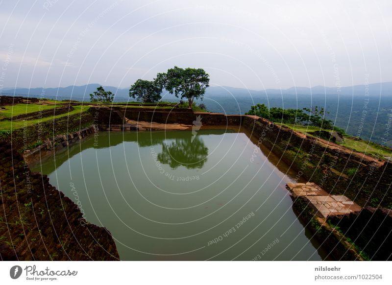 Sigiriya Natur Ferien & Urlaub & Reisen Pflanze grün Wasser Baum Landschaft ruhig Umwelt grau braun Erde Horizont Tourismus ästhetisch Ausflug