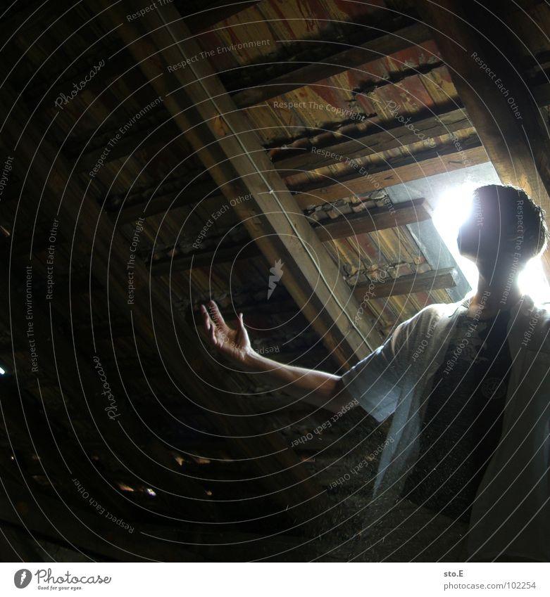 photosynthese stehen hochhalten Dachboden Kammer veraltet verfallen Gelände kalt mystisch unheimlich Angst unklar dunkel gefährlich Todesangst Licht Ausgang