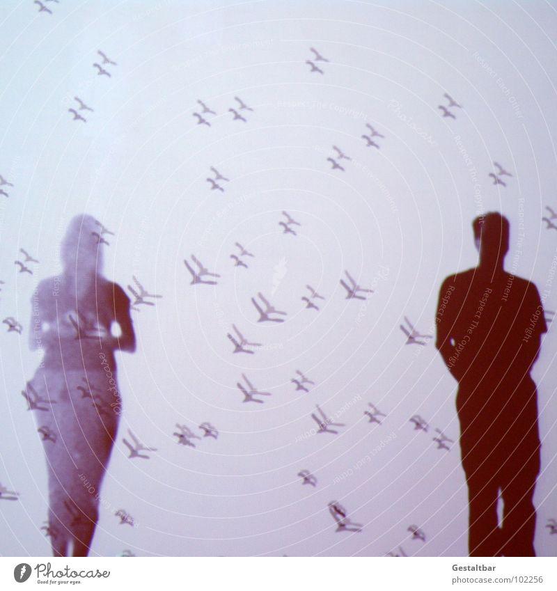 Schattenspiel 05 Vogel Frau feminin Mann maskulin stehen Silhouette frei geheimnisvoll In sich gekehrt Denken Tasche Porträt Aussicht Gute Laune gestaltbar