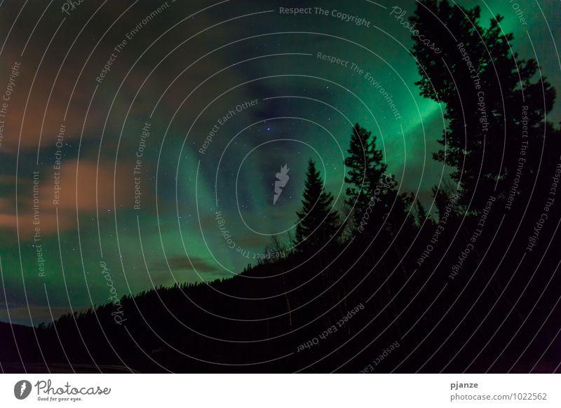 Dramatik Himmel Natur Ferien & Urlaub & Reisen Pflanze Baum Landschaft Wolken Ferne Wald Berge u. Gebirge Herbst Schnee Feld Luft Wind Ausflug