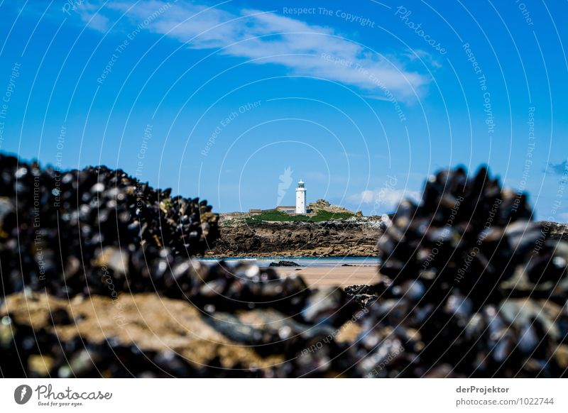 Leuchtturm mit Muscheln Natur Pflanze Landschaft Strand Ferne Umwelt Küste Frühling Wellen Tourismus Verkehr Insel Ausflug Schönes Wetter Hügel Bucht