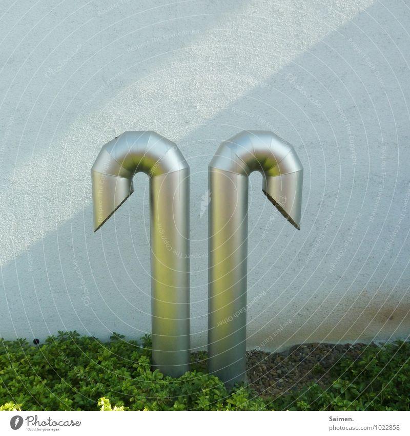 futuristisches Schwanenpaar Mauer Wand Fassade 2 paarweise Röhren Eisenrohr rund Strukturen & Formen Pflanze Metall Farbfoto Außenaufnahme Textfreiraum oben Tag