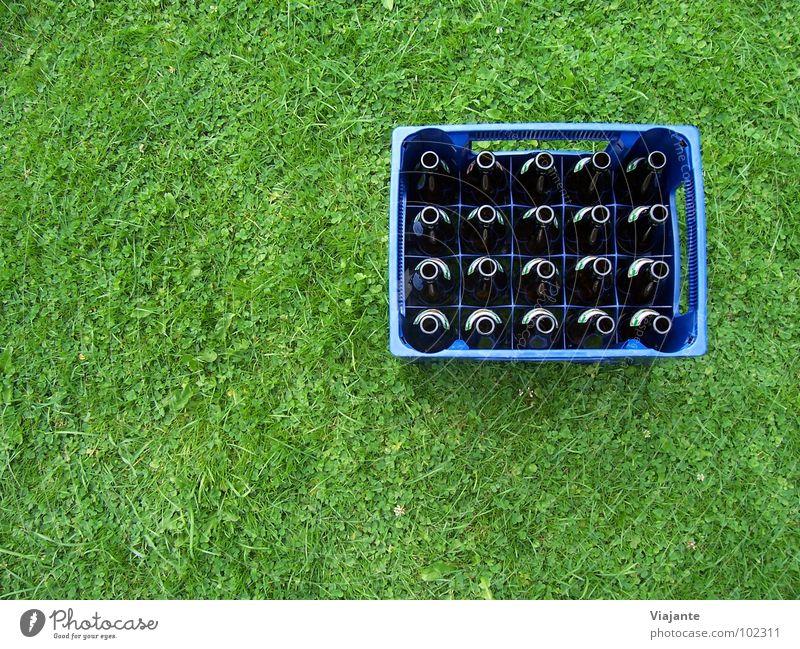 20 leere Hälse. Natur blau grün Wiese Gras Garten Feste & Feiern Park Rasen Niveau Gastronomie Bier Erfrischung Flasche Alkohol Alkoholisiert