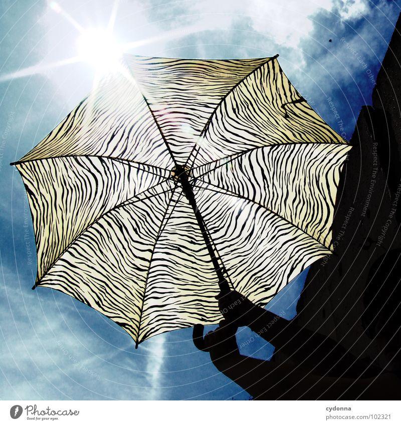RADIO-AKTIV XIII Stil Aktion Sonnenschirm Muster Sommer Himmel Dinge Silhouette Wetterschutz Wärme Schutz festhalten Tigerfellmuster gestreift Gegenlicht