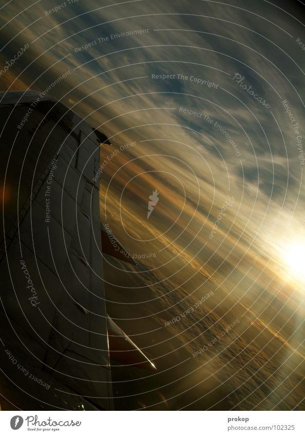 Temporär seelig Flugzeug Wolken Wolkendecke Gegenlicht Luft Ferien & Urlaub & Reisen fliegen wegfahren schön fantastisch Sommer Luftverkehr Himmel Flügel blau