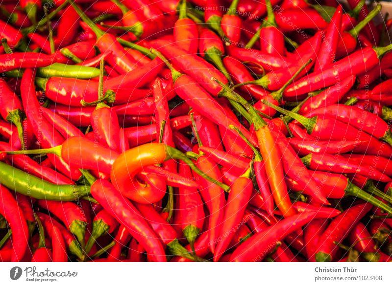 Pfefferoni / Chilli Lebensmittel Ernährung Essen Bioprodukte Vegetarische Ernährung Fasten harmonisch Wohlgefühl glänzend kaufen Gesundheit lecker Paprika