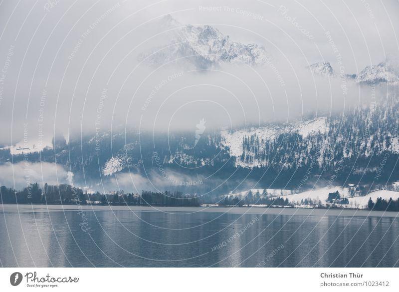 Winter am See Natur Ferien & Urlaub & Reisen Wasser Baum Erholung Landschaft Wolken ruhig Winter Berge u. Gebirge Umwelt Schnee Tourismus Zufriedenheit Eis Ausflug