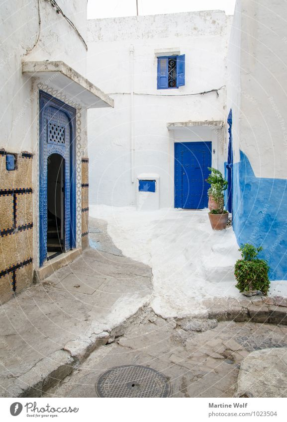 Kasbah de Oudaïa Rabat Marokko Afrika Altstadt Haus Ferien & Urlaub & Reisen Häusliches Leben blau weiß Gasse Außenaufnahme Menschenleer Tag